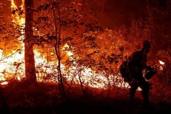 Biden Orders Federal Aid to California to Fight Wildfires, White House Says