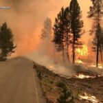 Climate-fueled wildfires take toll on tropical Pacific isles