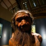 Neanderthals Could Have Died Out Because of Sex With Humans, New Study Suggests